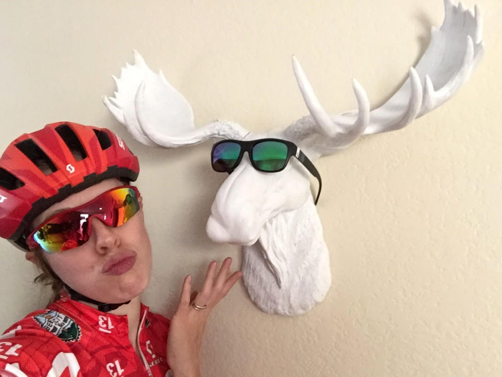 2015 Lindsay Bayer and The Moose