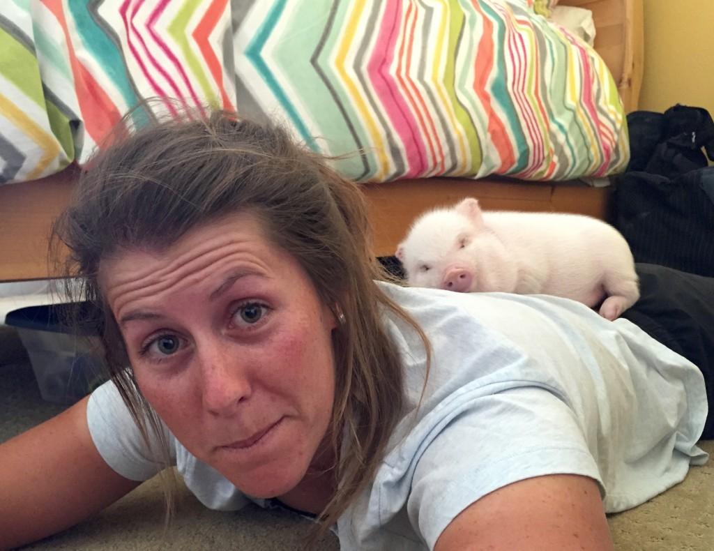 2015 Snuggling Pig