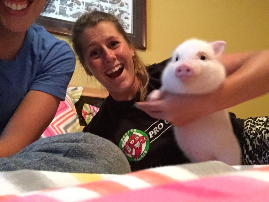 2015 Greatest Pet Ever...And Pig